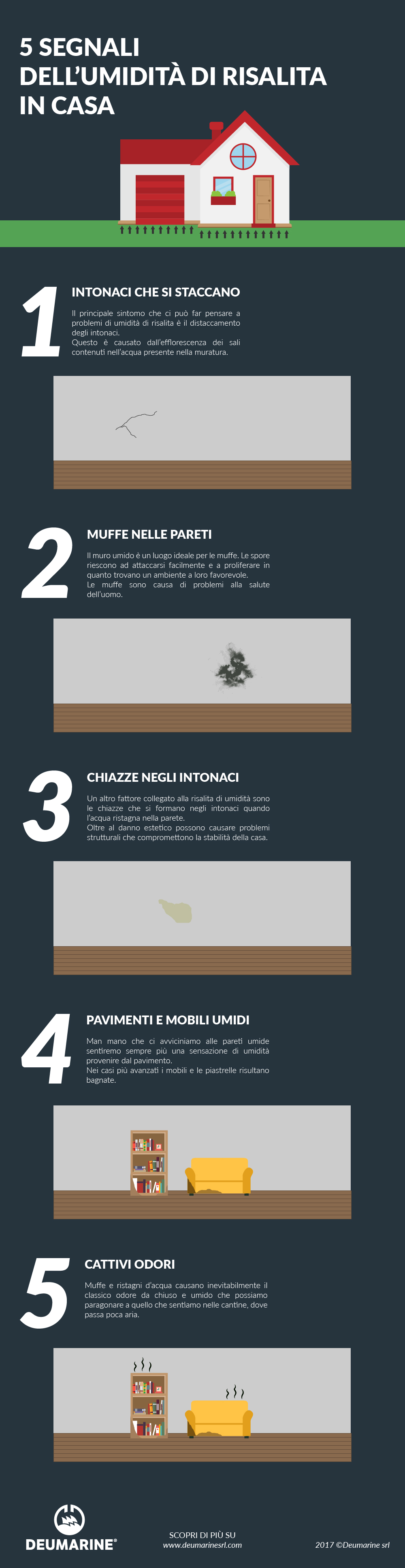 infografica umidità di risalita